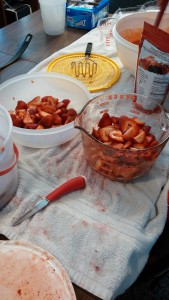 Slicing Strawberries - Copyright Adrienne Z. Milligan