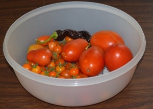 2015 Tomato and Pepper Harvest - Copyright Adrienne Z. Milligan